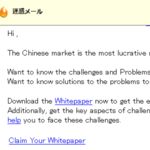 ENTERING THE CHINESE MARKET CHALLENGES AND SOLUTIONS